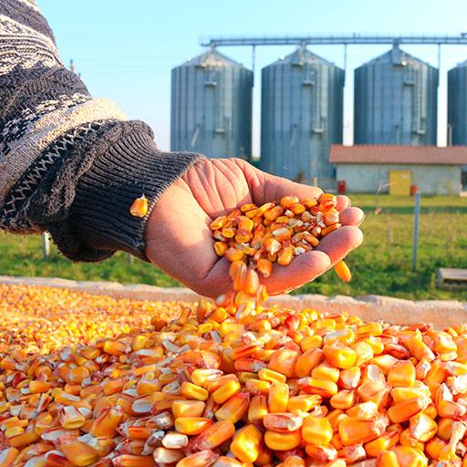 MMI Matéo Maintenance Industrielle : maintenance et filtration dans le secteur agroalimentaire