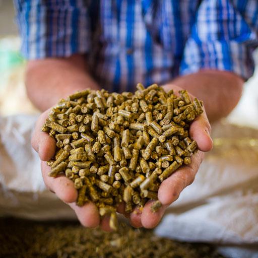 MMI Matéo Maintenance Industrielle : maintenance et filtration dans le secteur de la nutrition animale